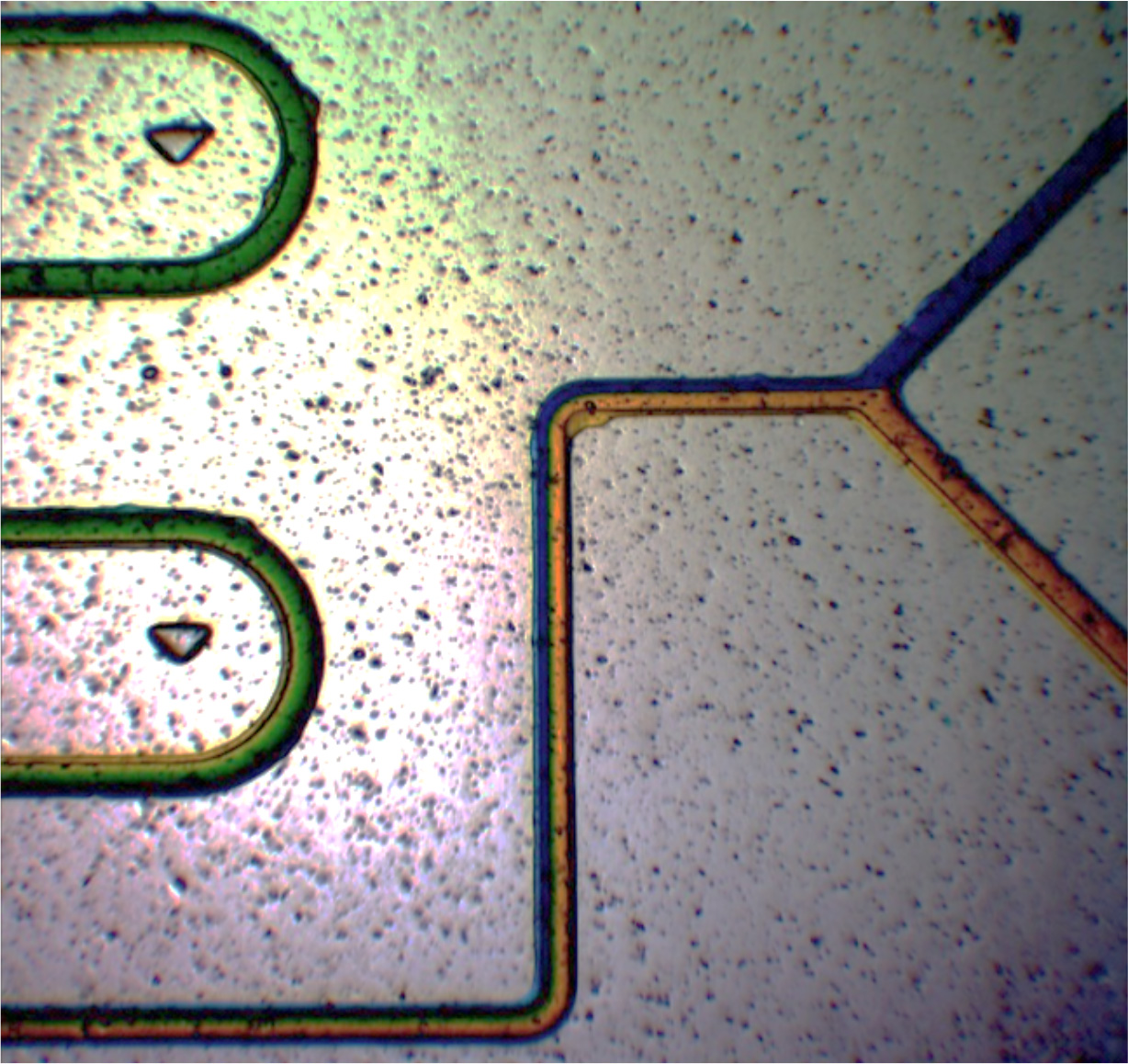 Polymer microfluidic chips stand to benefit from new manufacturing processes.