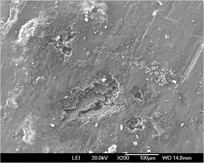 SEM Micrograph Depicting Defect Areas Due to Contamination During the Anodization Process
