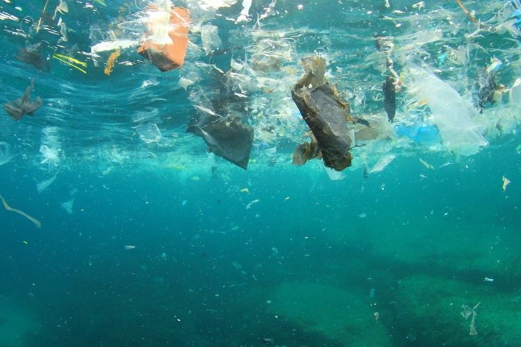What Does a New Plastics Economy Look Like?
